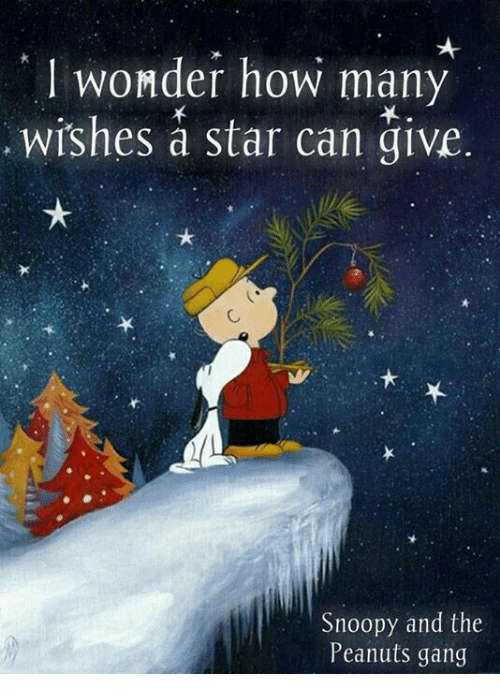 wonder-how-many-wishes-a-star-can-give-snoopy-and-9363894