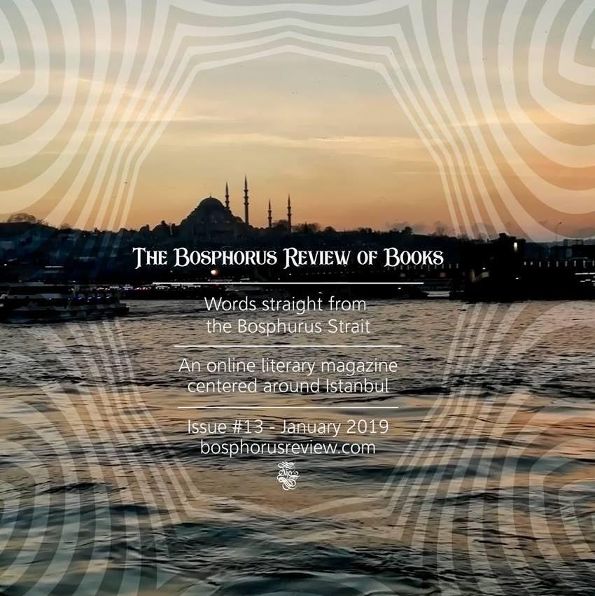 The Bosphorus Review of Books new logo